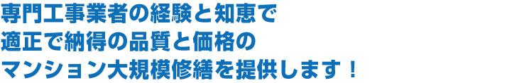 daikibosyuzen02.jpg